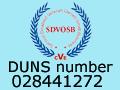 SDVOSB_Gov_Partner